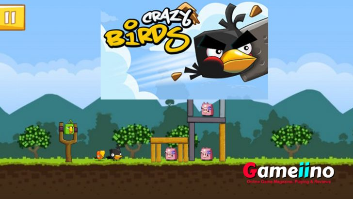 Crazy Birds The pigs want to expel the birdies from their own land - Gameiino