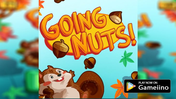 Going-Nuts-Game-play-now-on-gameiino