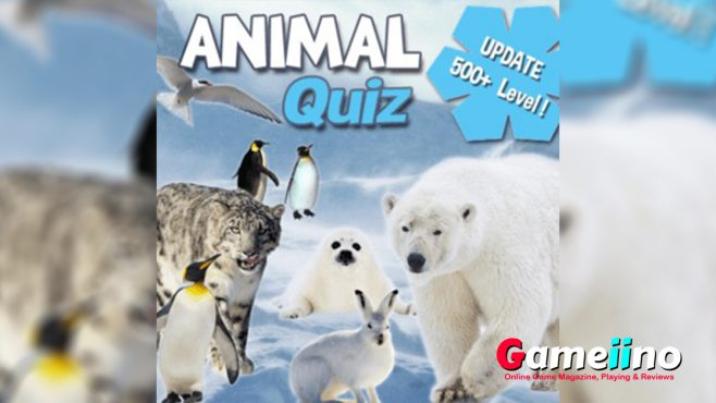 Animal Quiz Christmas Teaser Dog, cat, mouse - those animals are easy to identify, but with some species things become complicated. - image - Gameiino.com