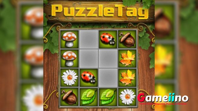 Four fun brain challenges are waiting for you in Puzzle Tag! - Gameiino